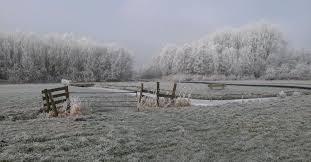 17 februari: Diemercross